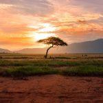 ceļojums uz āfriku